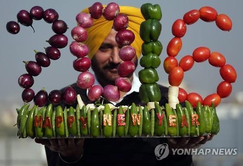 인도 예술가 하르윈더 싱 길이 자신의 새해맞이 채소 조형물을 보여주고 있다.2015.12.31(EPA=연합뉴스)