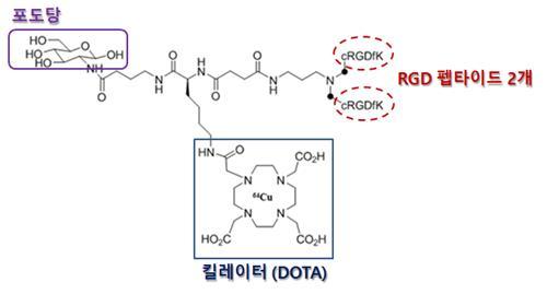 원자력의학원, 암세포 결합력 높인 진단의약품 개발