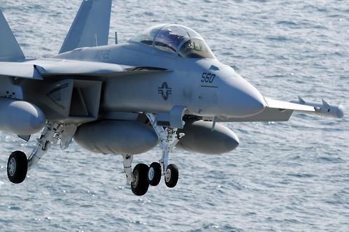 미해군의 EA-18G 그라울러 전자전기[위키피디아 제공]