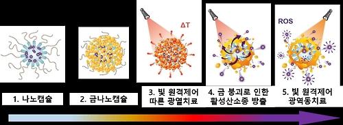 암세포만 표적 공격하는 금 입힌 나노캡슐 개발