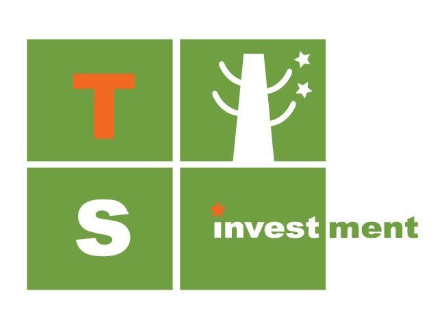 티에스인베스트먼트 회사 로고