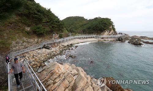 '동해 탄생의 비밀'…강릉 해안단구 탐방로[연합뉴스 자료사진]
