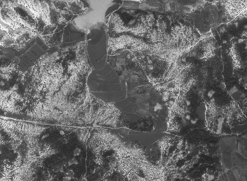 1972년 포항 흥해읍 모습 [임업진흥원 제공=연합뉴스]