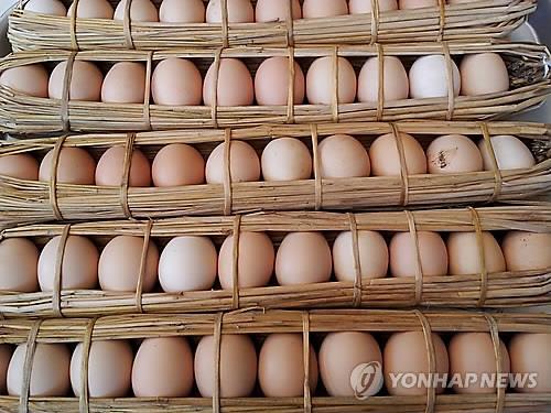 <김길원의 헬스노트> '닭의 해' 계란 좀 많이 먹어볼까