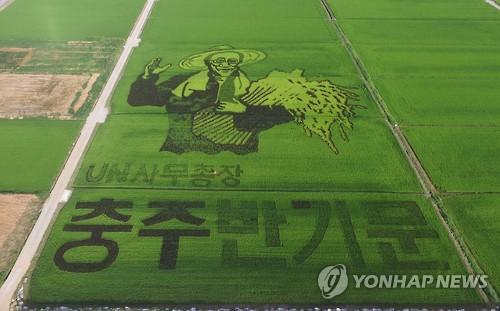 반기문 논그림[연합뉴스 자료사진]