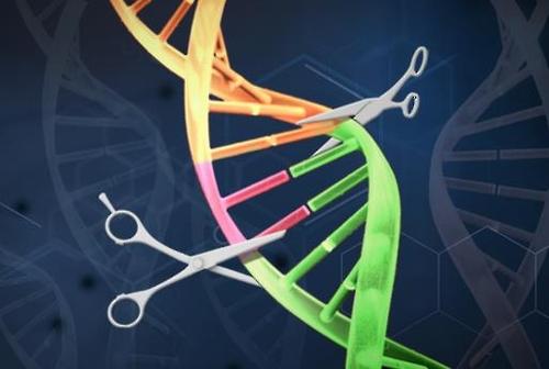 유전자가위기술 그래픽