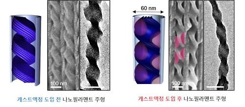 3차원 나선형 나노구조체(왼쪽)와 이 구조체 내에 액정물질을 도입 후 모습