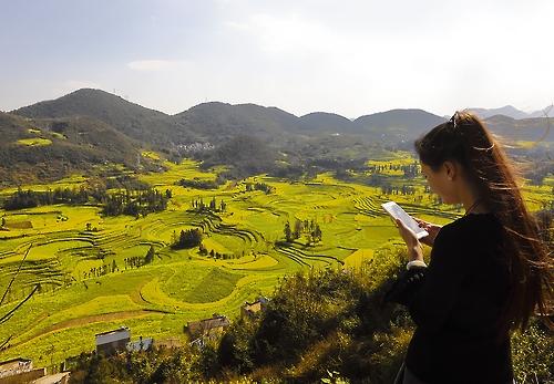 카르스트 지형 보여주는 루오시 유채밭(성연재 기자)