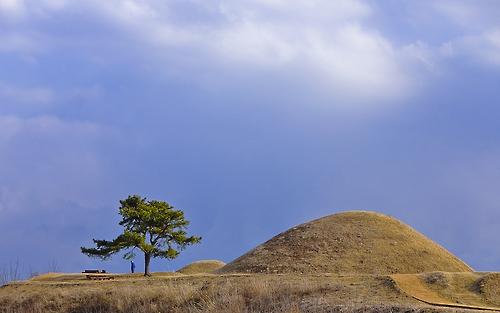 높은 언덕 위에서 함안 읍내를 내려다 보고 있는 말이산 고분군.(성연재 기자)