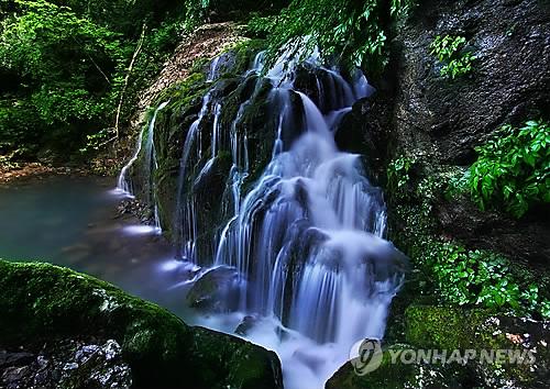 삼척 도계읍 무건리 이끼폭포[연합뉴스 자료사진]