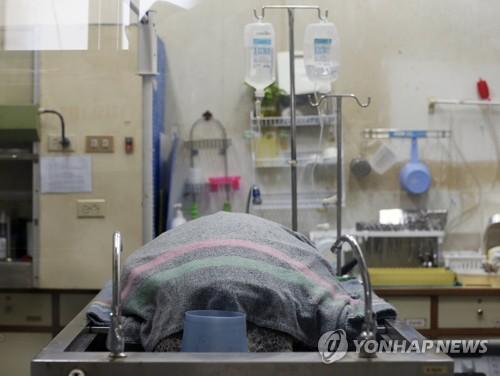 수술후 상태가 위중해진 초록바다거북[epa=연합뉴스 자료사진]