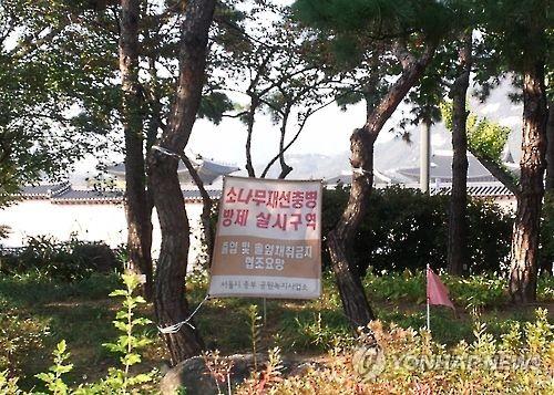 소나무재선충 방제 구역 [연합뉴스 자료사진]