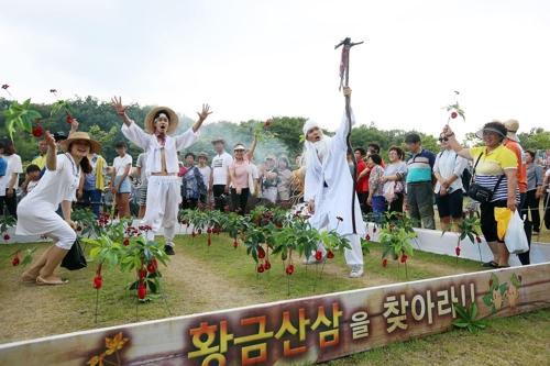 """""""함양산삼축제 독창성 키운다""""…총감독 첫 공모"""
