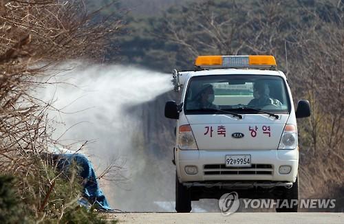 AI방역 [연합뉴스 자료사진]