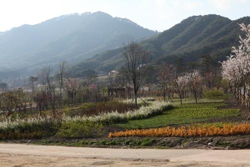 백두대간 수목원의 봄 풍광 [산림청 제공=연합뉴스]