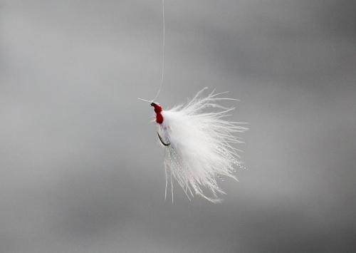 새의 깃털과 같은 친자연적인 소재로 만들어진 플라이낚시 훅(미끼) (성연재 기자)