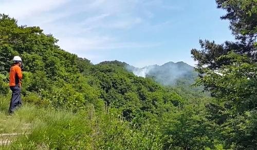 부산 백양산 산불