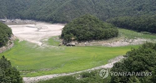 풀만 가득한 강릉식수원 오봉 저수지[연합뉴스 자료사진]