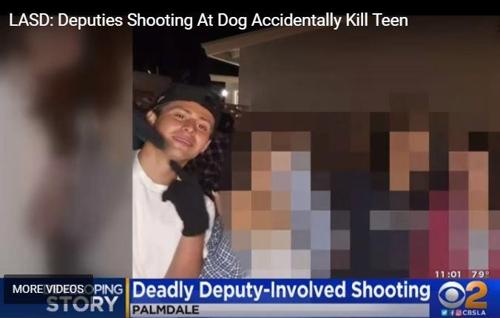 경찰관이 개 향해 쏜 총알에 튕겨맞고 소년 사망