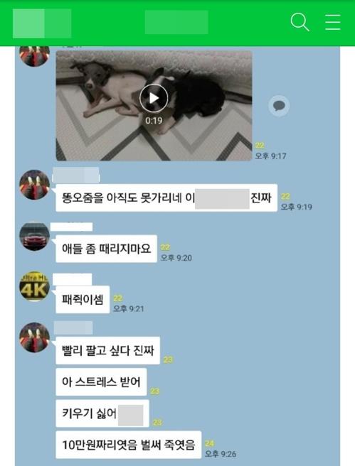 '배변 못가린다'며 강아지 학대…SNS서 영상 확산