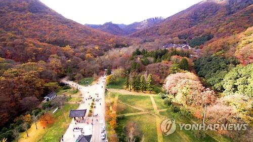 열린관광지인 고창 선운산도립공원[연합뉴스 자료사진]