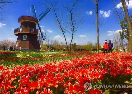 봄꽃으로 물든 순천만국가정원[연합뉴스 자료사진]