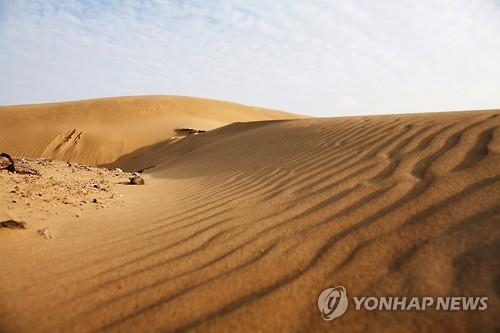 지금은 출입 금지된 우이도 사구 정상 [전남 신안군 제공=연합뉴스]