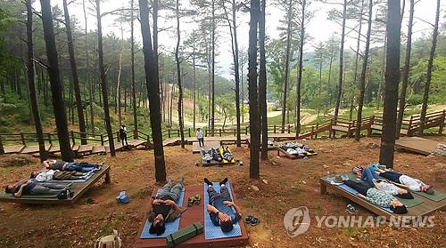 산림치유 프로그램 [연합뉴스 자료사진]