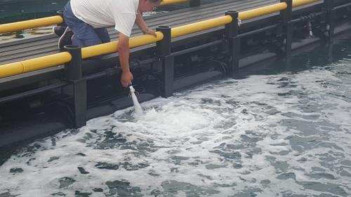 양식어장 저층 해수공급장치