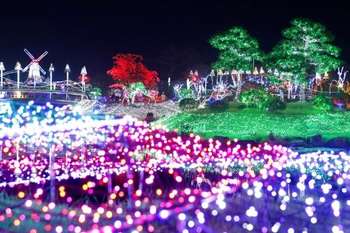 남면 신온리 네이처월드 빛축제