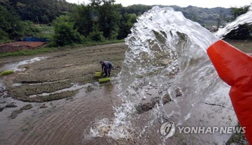 모내기용 물 공급