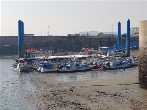 영흥도 진두항에 정박한 어선들 [인천해양경찰서 제공=연합뉴스]