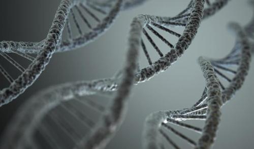 DNA 구조[게티이미지뱅크 제공]
