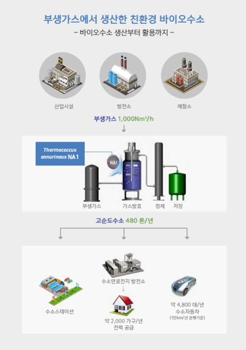 해양바이오 수소 생산 및 활용