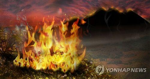 산불 화재 PG [연합뉴스 자료사진]