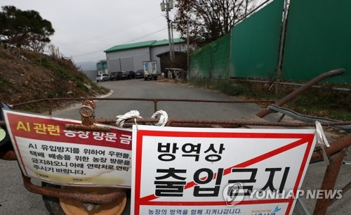 가금류 이동중지 명령[연합뉴스 자료사진]