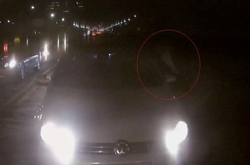 음주운전하다가 뒤차 운전자 폭행