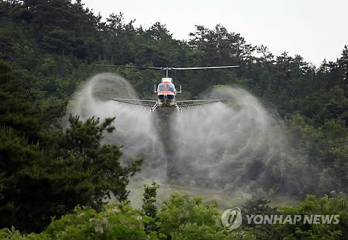 항공방제하는 산림청 헬기 [연합뉴스 자료사진]