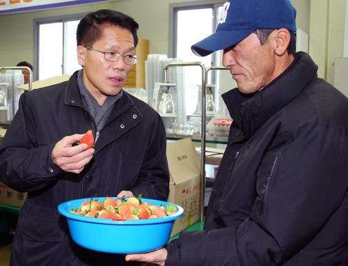 딸기 농가 격려하는 한 권한대행