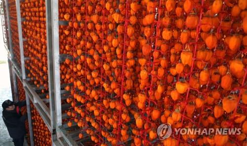 '임금님도 반한 맛' 함안곶감…서울 청계천 찾는다