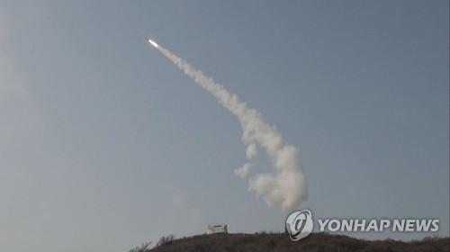 방사청이 공개한 M-SAM 요격시험 사진