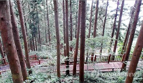 진천 치유의 숲