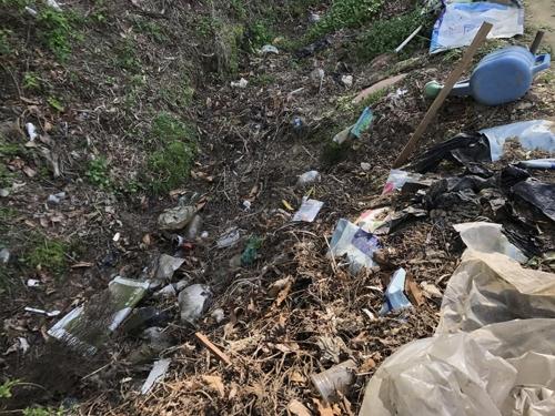 쓰레기 방치된 양서류 서식지