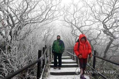 덕유산 눈꽃여행 [연합뉴스 자료사진]