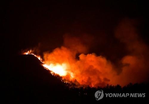 불기둥 솟는 삼척산불