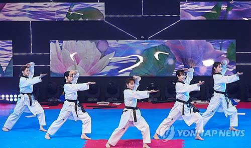 남북 태권도 합동 시범단, MBC서 공연
