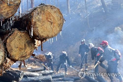 진화수도 얼어붙은 한파[연합뉴스 자료사진]