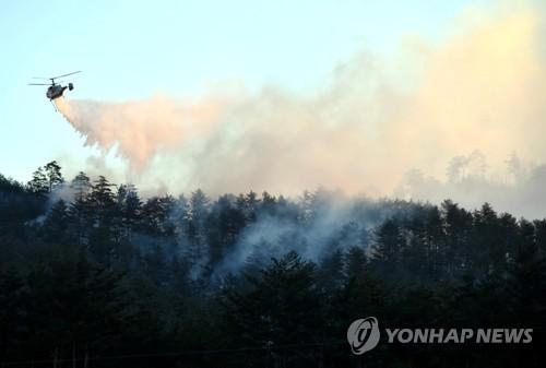 산불 조심 [연합뉴스 자료사진]