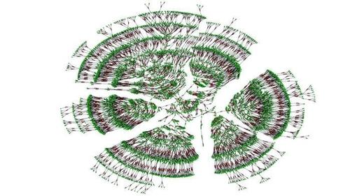 사상 최대 가계도 중 극히 일부인 6천명의 7세대 혈연관계를 표시한 그림
