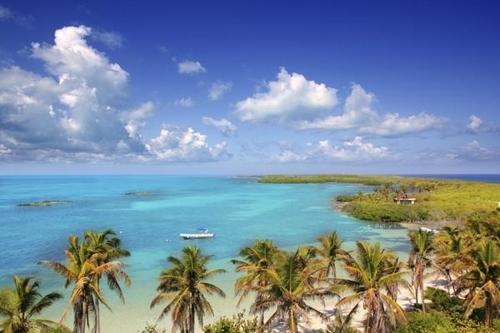 혹시 이번 휴가에 보라카이 가세요?